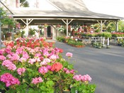 Country Gardens Garden Center